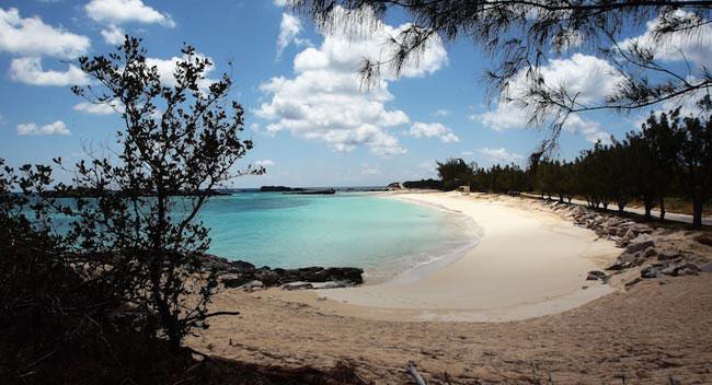 Cooper S Island Nature Reserve Bermuda
