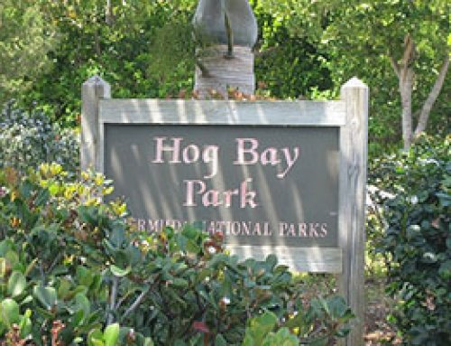Hog Bay Park
