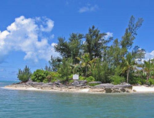 Palm Island Bermuda