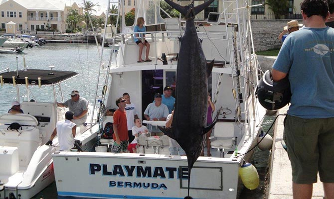 Playmate Fishing Charters