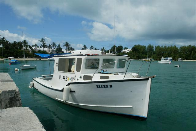 Baxters reef fishing bermuda for Fishing in bermuda