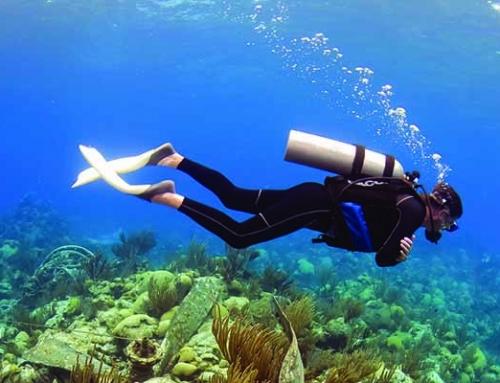 Ten ways to Enjoy the Ocean Off-Season in Bermuda