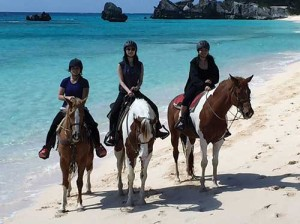 Bermuda-Horse-Back-Riding