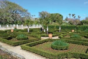 Botanical-Gardens-Bermuda
