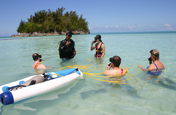 Fantasea Diving & Watersports