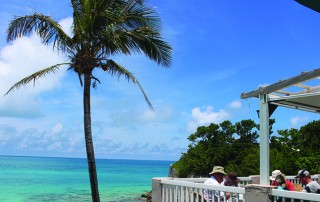 Palm Tree Beach House