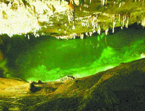 Do you know about Bermuda's Caves