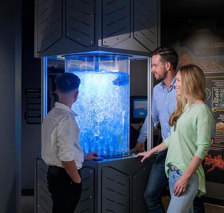 The Bermuda Triangle: Unlock the Secrets at BUEI's Ocean Discovery Centre