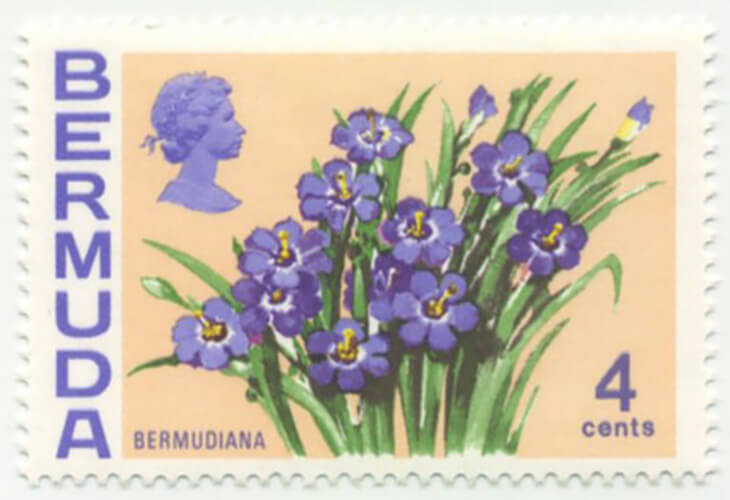Do You Know... About Bermuda's National Flower and Ireland's National Rate Postage Stamp?