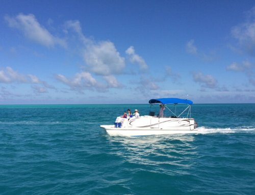 K.S. WaterSports – Boat Charters 23ft