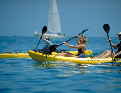 K.S. WaterSports – Kayak Rentals