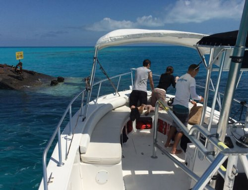 K.S. WaterSports – Boat Charters 28ft