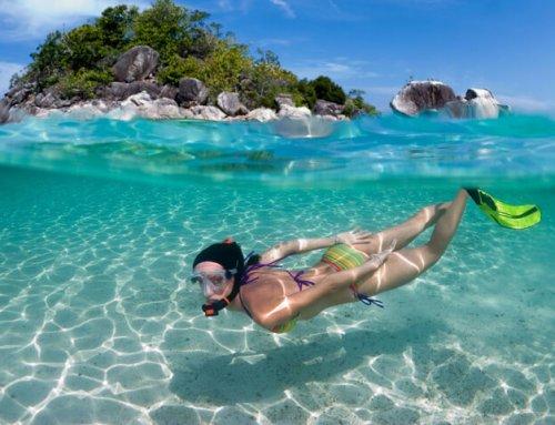K.S. WaterSports – Snorkeling