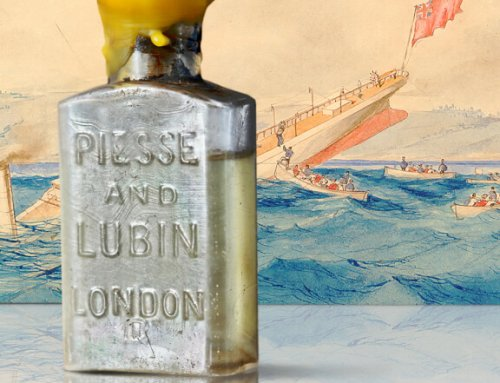Mary Celestia – One of Bermuda's Most Mysterious Shipwrecks and A Legendary Perfume by Lili Bermuda