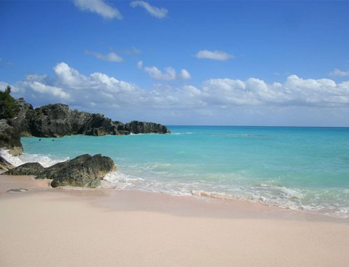 Visitors will soon return to Bermuda in larger numbers. Are you prepared?